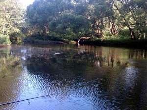 Рыбалка на реке Северка
